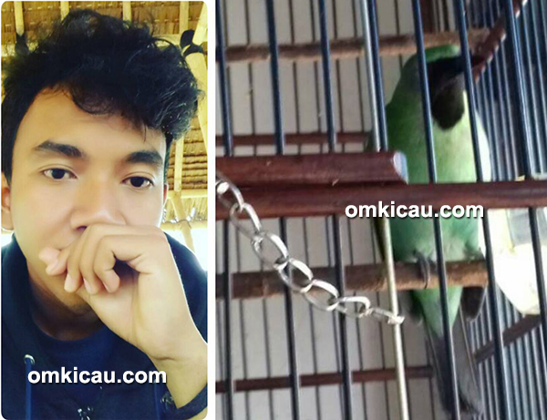 Om Rano dan cucak hijau Petir