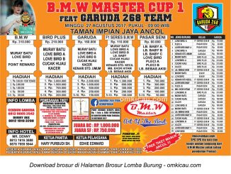 bmw master cup 1