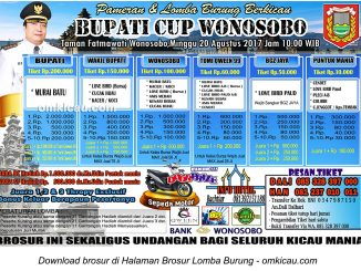 bupati cup wonosobo