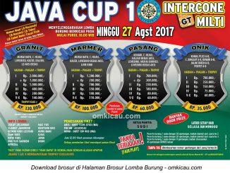 Java Cup 1 Intercone GT Enterprise