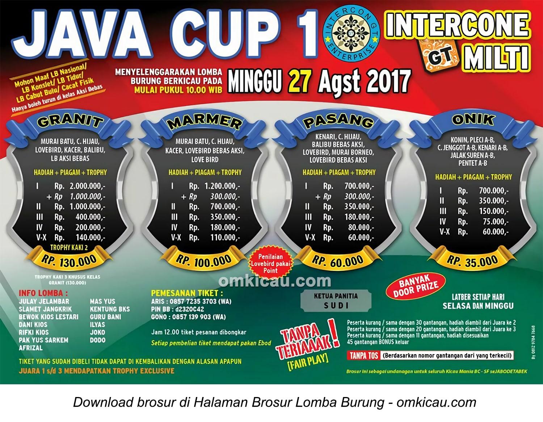 Java Cup 1 Intercone GT Enterprise
