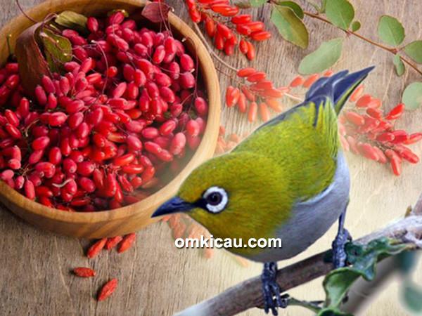 buah goji berry