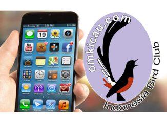 aplikasi iphone omkicau