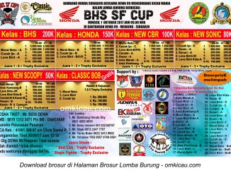 BHS SF Cup