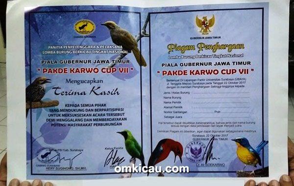 Pakde Karwo Cup VII