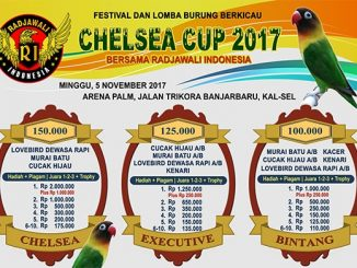 Chelsea Cup 2017