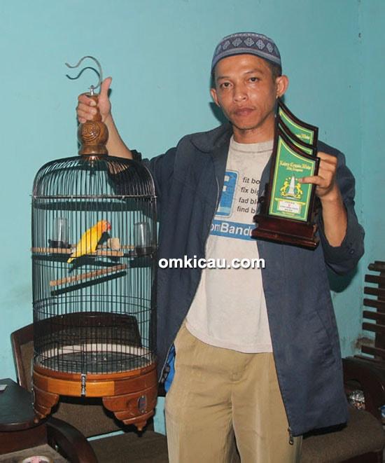lovebird Lala Junior