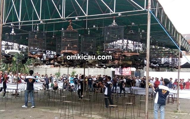 Pesta Rakyat Kicau Mania