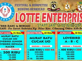 Latber Lotte Enterprise