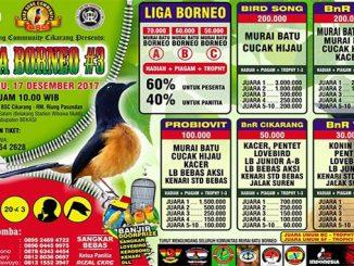 Liga Borneo #3