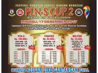 PLN-S Cup 2
