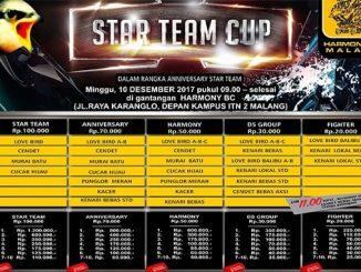 Star Team Cup