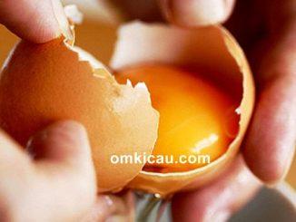 Mengolah kuning telur menjadi tepung untuk pakan burung