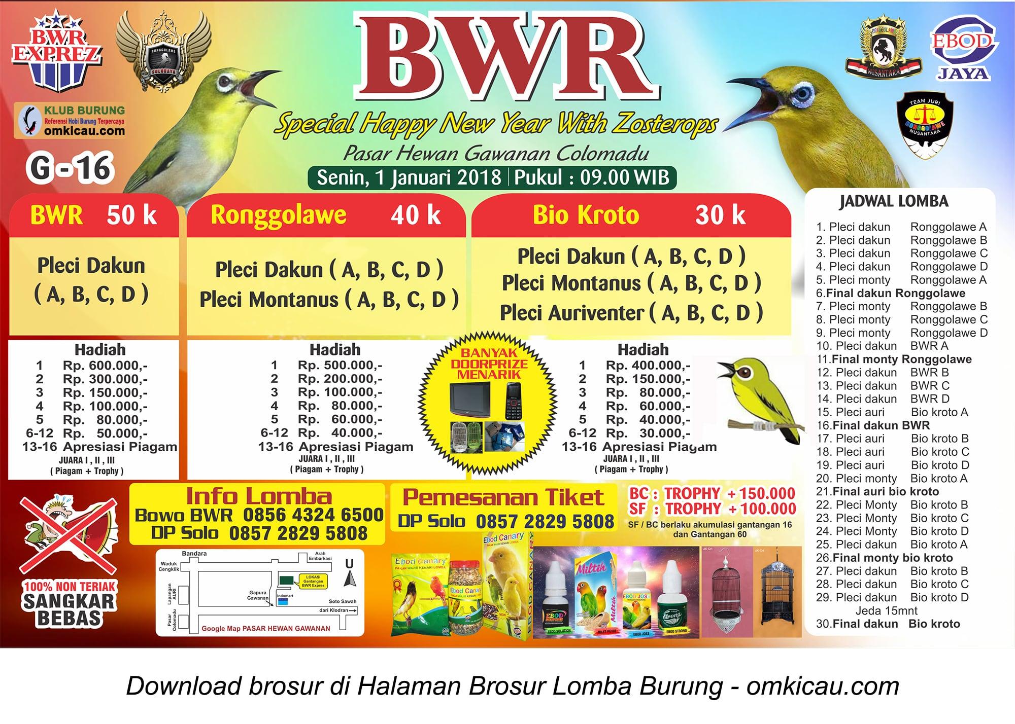 kontes pleci BWR Special Happy New Year