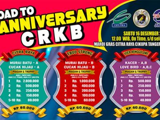 Road to Anniversary CRKB