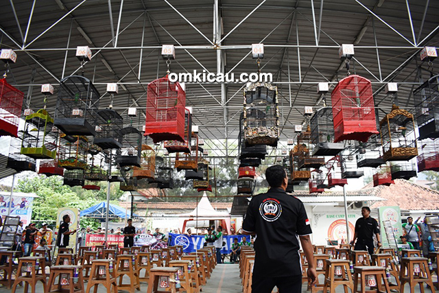 LBB Team Cup V