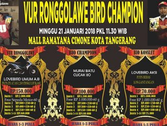 Vur Ronggolawe Bird Champion