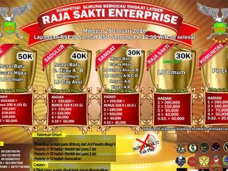 raja sakti enterprise