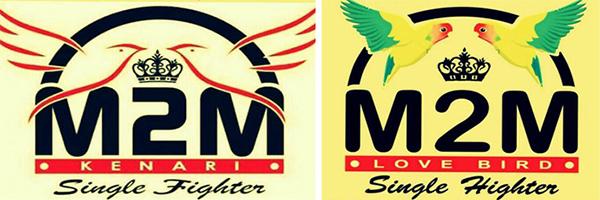 logo M2M SF