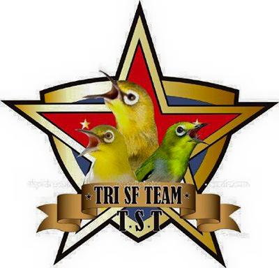 Tri SF Team