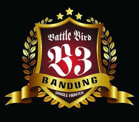 battle bird bandung