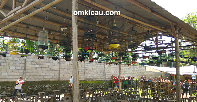 Arkam Bird Club Contest