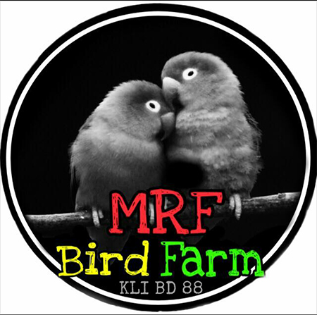 MRF Bird Farm
