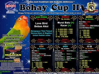 Bohay Cup II