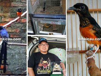 Digdaya Bird Keeping