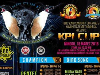KPI Cup I