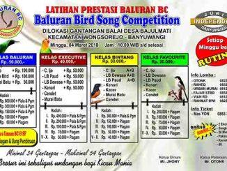 Baluran BC