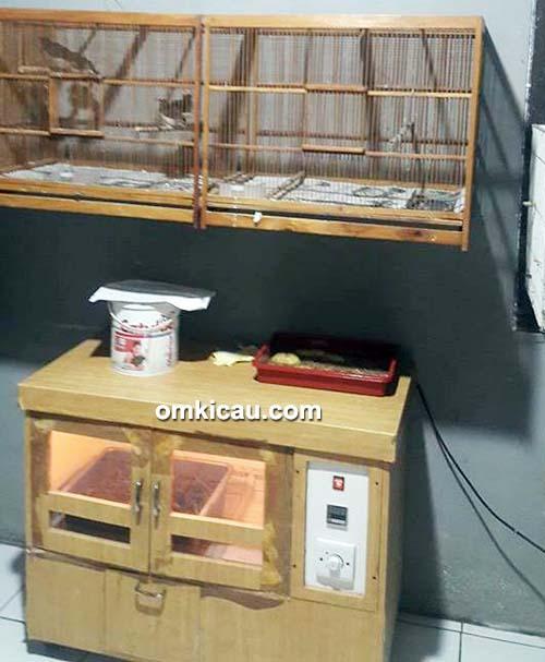 Ruang inkubator