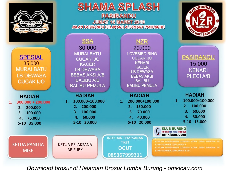 Latber Shama Splash