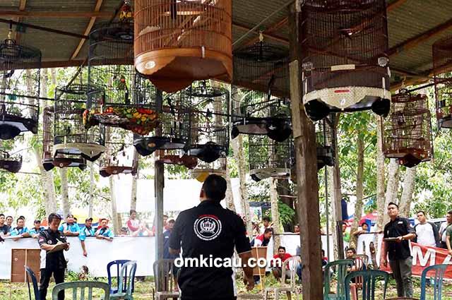 Hafis Bird Shop