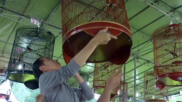 Piala Presiden Jokowi
