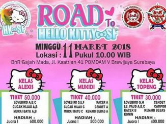 Road to Hello Kitty SF