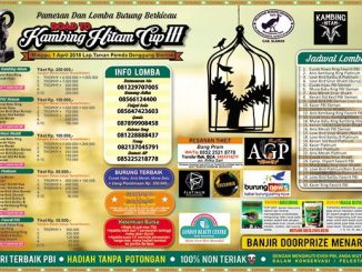 Road to Kambing Hitam Cup III