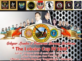 The Lobster Cup IV