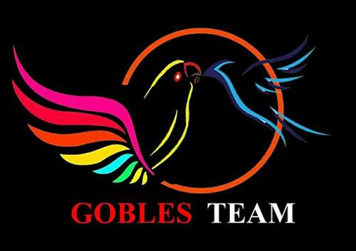 Gobles Team