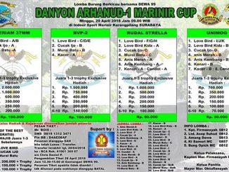 Danyon Arhanud-1 Marinir Cup