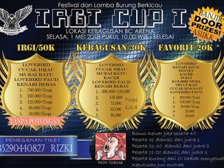 Irgi Cup I