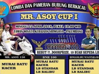 Mr Asoy Cup I
