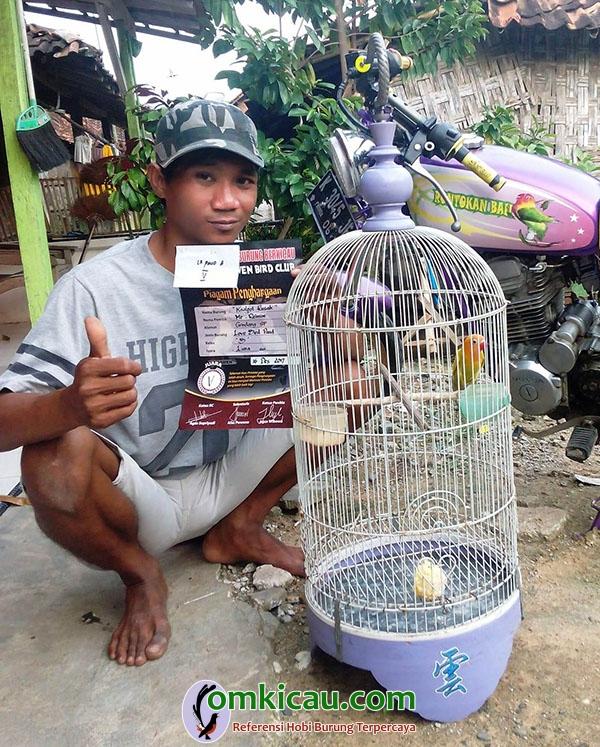 lovebird Cakram