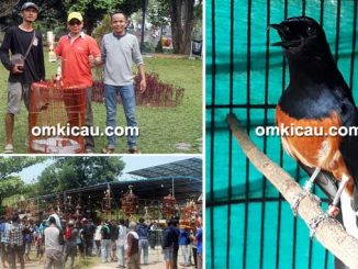 Bupati Cup Bogor