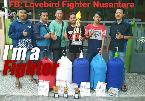 FB Lovebird Fighter Nusantara