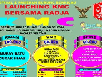 Launching KMC