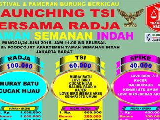 Launching TSI