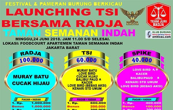 Launching TSI