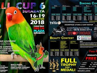 KLI Cup 6