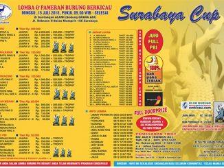 Surabaya Cup 3